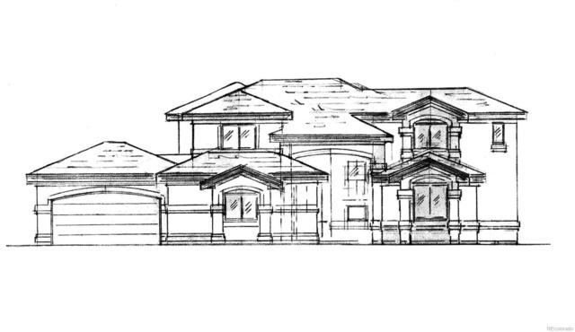 320 Indigo Trails, Brighton, CO 80601 (#9260418) :: The City and Mountains Group