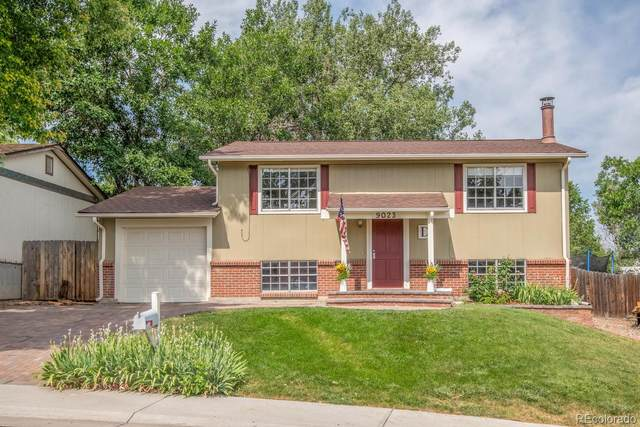 9023 Dover Street, Broomfield, CO 80021 (#9261038) :: Colorado Home Finder Realty