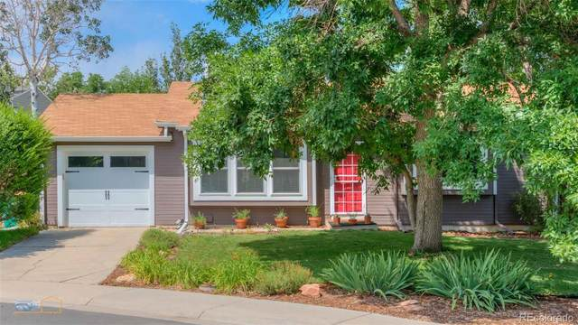 1463 W 135th Place, Westminster, CO 80234 (#9266828) :: The Griffith Home Team