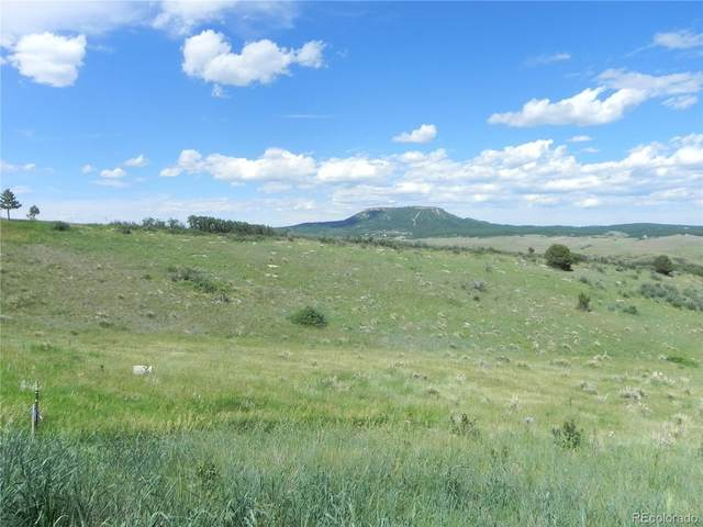 5503 Country Club Drive, Larkspur, CO 80118 (MLS #9266891) :: Find Colorado