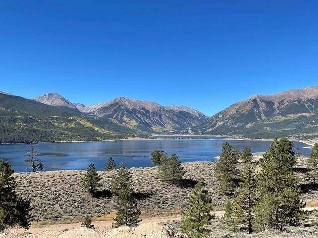 270 Rainbow Drive, Twin Lakes, CO 81251 (#9272874) :: You 1st Realty