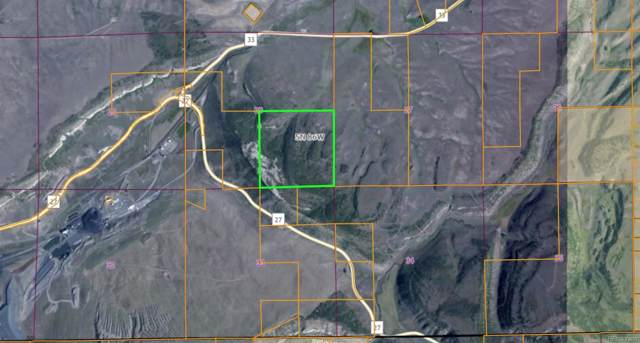 SE4 Sec 28-5-86 County Rd 33, Oak Creek, CO 80467 (#9273096) :: HergGroup Denver