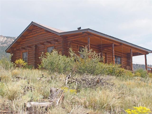 34500 County Road 375, Buena Vista, CO 81211 (#9275579) :: The Healey Group