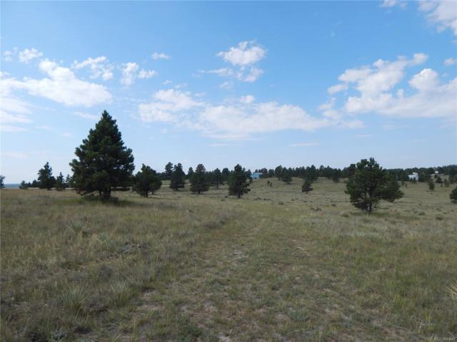 27997 Forest Ridge Drive, Kiowa, CO 80117 (#9275907) :: The City and Mountains Group
