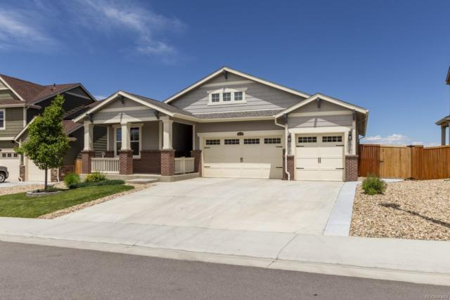 14270 Hudson Street, Thornton, CO 80602 (MLS #9276590) :: Bliss Realty Group