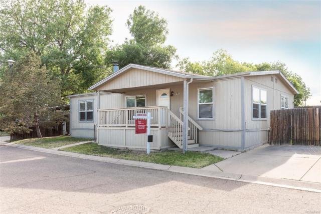 8481 Adams Way, Denver, CO 80229 (#9277756) :: Wisdom Real Estate