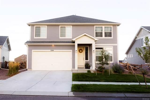 7296 Horizon Wood Lane, Colorado Springs, CO 80927 (MLS #9279105) :: 8z Real Estate