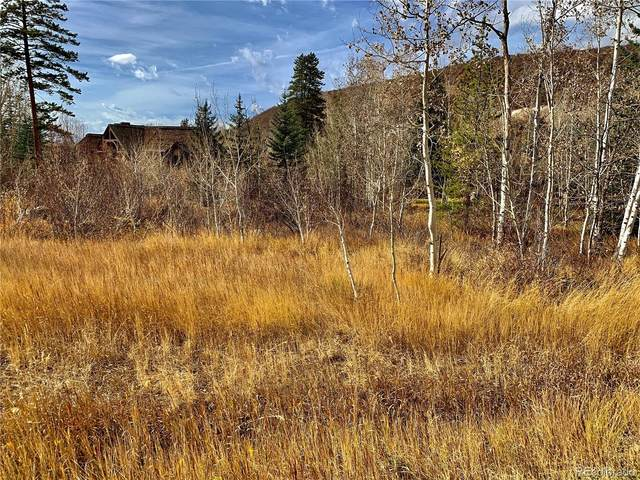 863 Steamboat Boulevard, Steamboat Springs, CO 80487 (MLS #9279242) :: Neuhaus Real Estate, Inc.