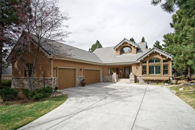3117 Ramshorn Drive, Castle Rock, CO 80108 (#9280339) :: Hometrackr Denver
