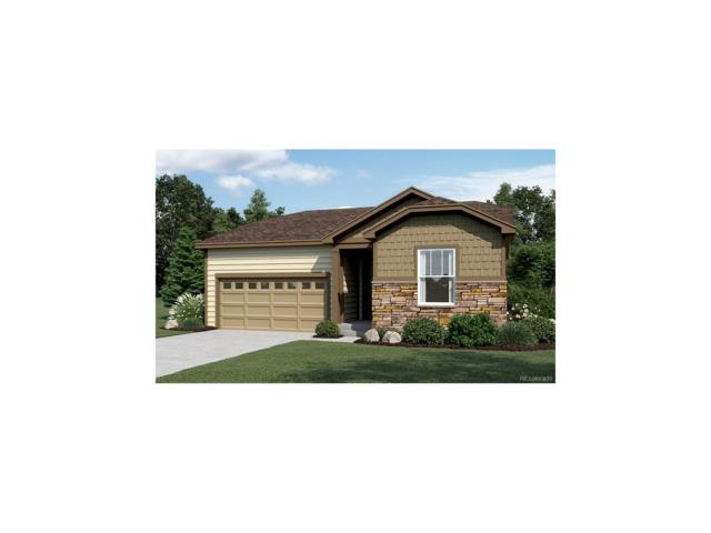 5164 Osbourne Drive, Windsor, CO 80543 (MLS #9287254) :: 8z Real Estate