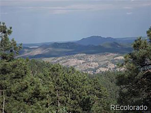 266 Ptarmigan Trail, Bailey, CO 80421 (MLS #9292270) :: 8z Real Estate