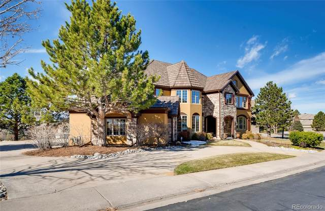 738 Fairchild Drive, Highlands Ranch, CO 80126 (#9294010) :: HomeSmart Realty Group