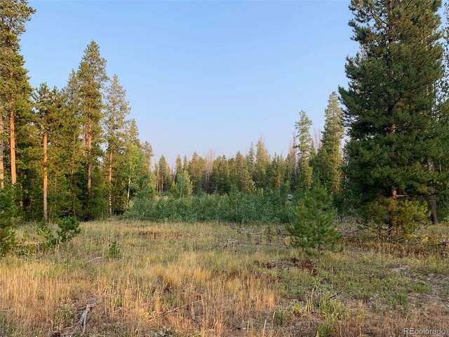 20935 Cayuse Way, Oak Creek, CO 80467 (#9294813) :: Real Estate Professionals
