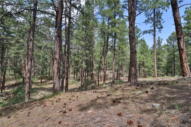1542 Meadow Trail, Franktown, CO 80116 (#9297725) :: Kimberly Austin Properties