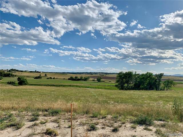 3163 Red Kit Road, Franktown, CO 80116 (#9303513) :: The DeGrood Team