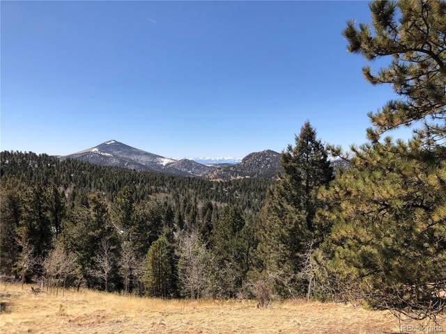 16 Princess Lane, Cripple Creek, CO 80813 (MLS #9303970) :: 8z Real Estate