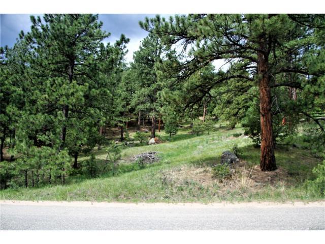 S Alpine Drive, Evergreen, CO 80439 (MLS #9304071) :: 8z Real Estate