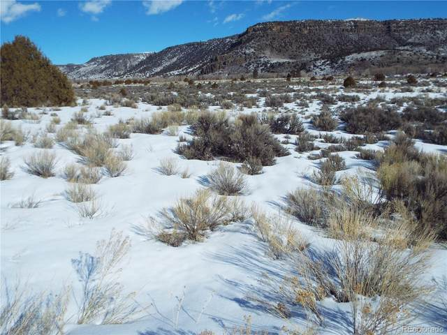 lot 11 Conejos Trail, Antonito, CO 81120 (#9309878) :: The DeGrood Team