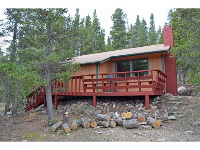 1071 Silver Creek Road, Idaho Springs, CO 80452 (MLS #9311064) :: 8z Real Estate