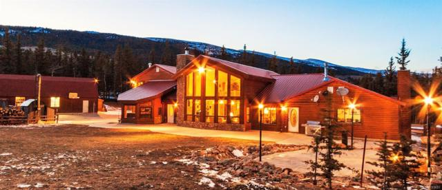 89 Sheep Creek Trail, Fairplay, CO 80440 (#9311731) :: Arnie Stein Team | RE/MAX Masters Millennium