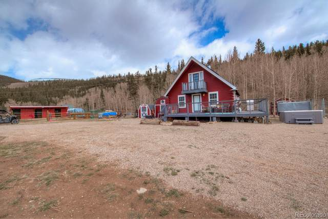 2445 Park County Road 12, Alma, CO 80420 (#9315822) :: Bring Home Denver with Keller Williams Downtown Realty LLC