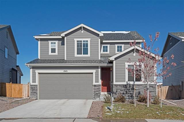 1045 White Leaf Circle, Castle Rock, CO 80108 (#9315919) :: The HomeSmiths Team - Keller Williams