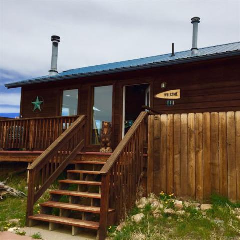 118 Sleepy Grass Court, Fairplay, CO 80440 (#9318796) :: Wisdom Real Estate