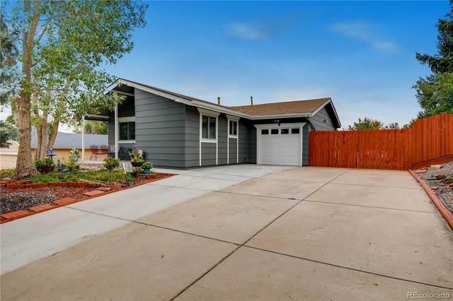 8126 Downing Street, Denver, CO 80229 (MLS #9320989) :: 8z Real Estate