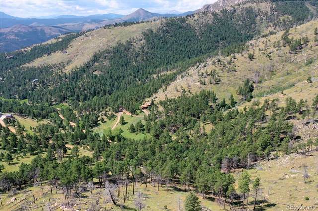 1141 County Road 83, Boulder, CO 80302 (MLS #9322996) :: Neuhaus Real Estate, Inc.
