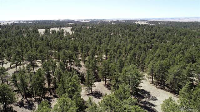 23984 Emerald Trail, Deer Trail, CO 80105 (#9329811) :: The Dixon Group