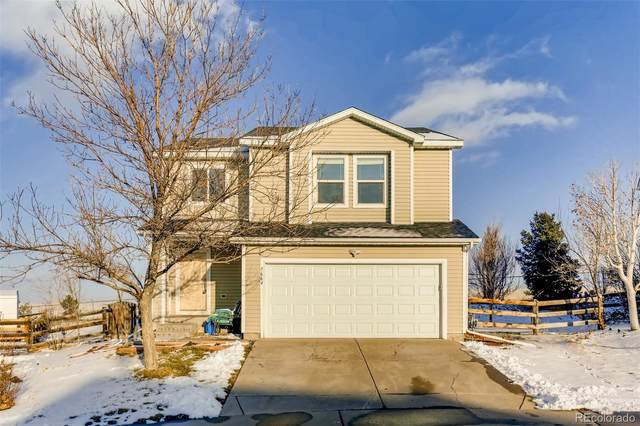 7664 Brown Bear Court, Littleton, CO 80125 (MLS #9331885) :: 8z Real Estate