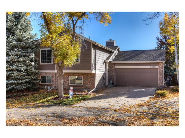 9228 Butterwood Court, Highlands Ranch, CO 80126 (MLS #9333245) :: 8z Real Estate