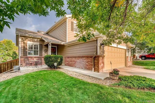 5780 Cheetah Chase, Littleton, CO 80124 (#9334840) :: The DeGrood Team