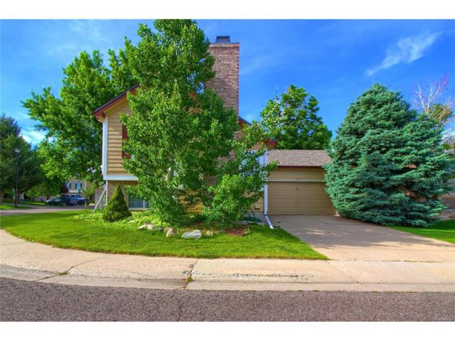 672 White Cloud Drive, Highlands Ranch, CO 80126 (#9339687) :: The Peak Properties Group