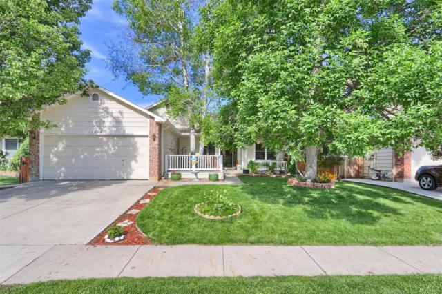 11378 Eaton Street, Westminster, CO 80020 (#9340986) :: The Heyl Group at Keller Williams