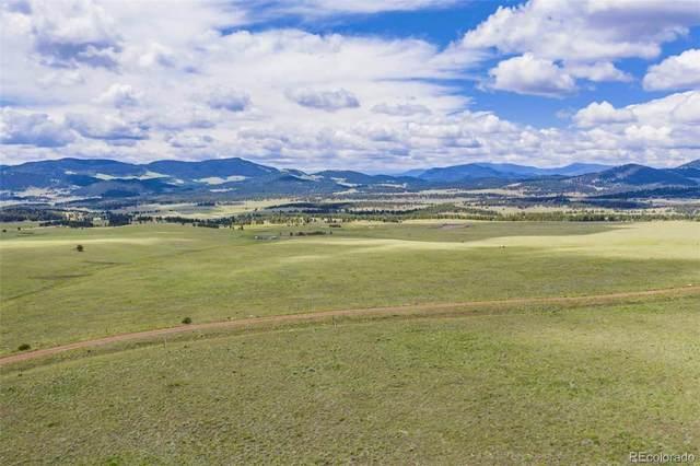301 Lakeview Trail, Guffey, CO 80820 (#9341325) :: Symbio Denver