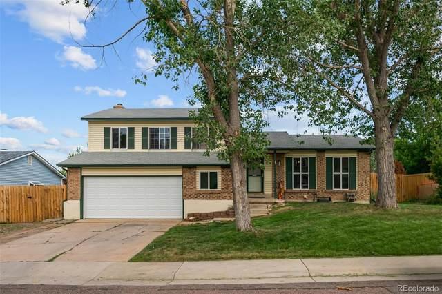 7628 S Holland Way, Littleton, CO 80128 (MLS #9343222) :: 8z Real Estate