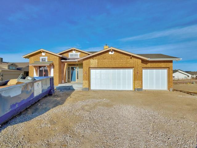 12495 Arrow Creek Court, Colorado Springs, CO 80921 (MLS #9343684) :: Bliss Realty Group