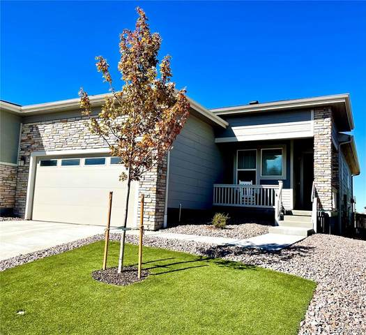 3915 Happy Hollow Drive, Castle Rock, CO 80104 (#9346627) :: Venterra Real Estate LLC