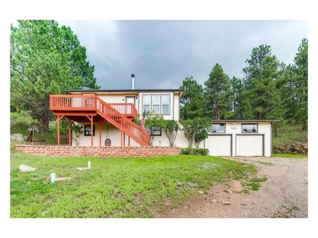 1191 Sleepy Hollow Drive, Bailey, CO 80421 (MLS #9346766) :: 8z Real Estate
