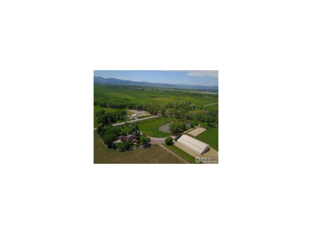 7720 N 73rd Street, Niwot, CO 80503 (MLS #9347208) :: 8z Real Estate