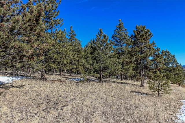 141 Pike View Road, Lake George, CO 80827 (#9351605) :: Sultan Newman Group