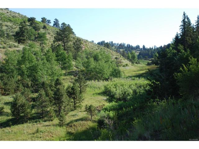 County 1 Road, Cripple Creek, CO 80813 (MLS #9357056) :: 8z Real Estate