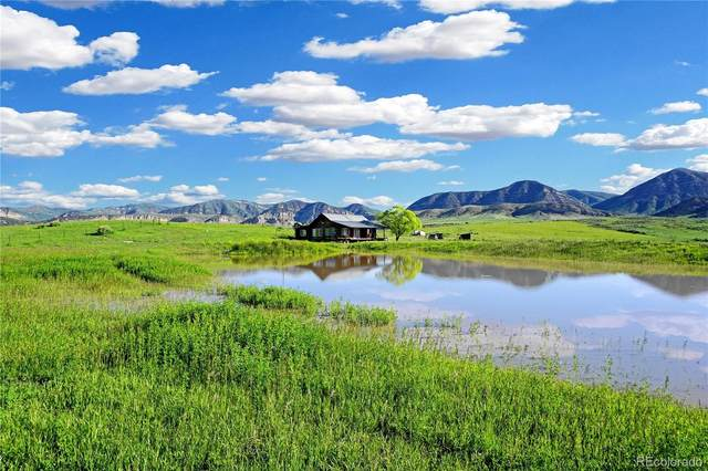 1560 County Road 15, Meeker, CO 81641 (#9357219) :: The DeGrood Team