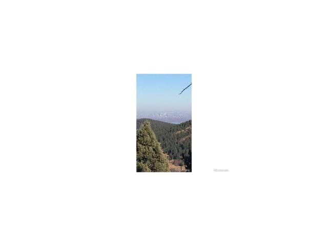 Keuhster Road, Littleton, CO 80127 (MLS #9358143) :: 8z Real Estate