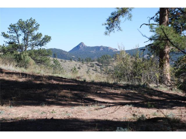 6-7 Turret Trail, Pine, CO 80470 (MLS #9358983) :: 8z Real Estate