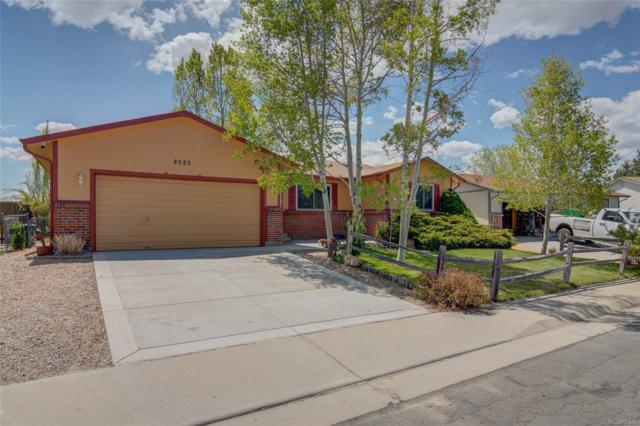 8525 Carr Court, Arvada, CO 80005 (#9362215) :: milehimodern