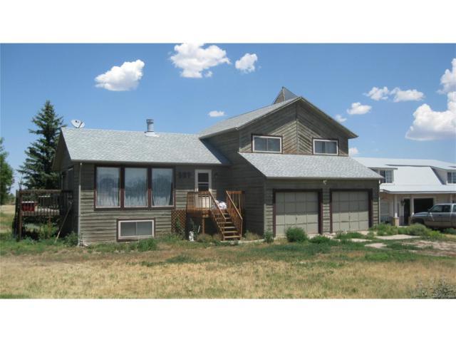 527 Rome Avenue, Parker, CO 80138 (MLS #9362946) :: 8z Real Estate
