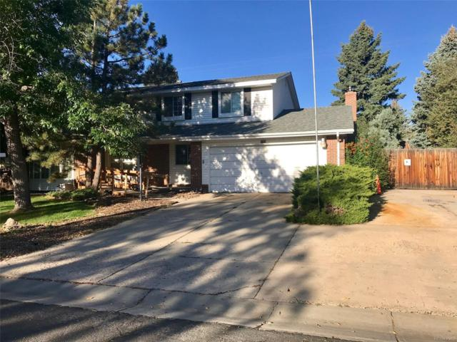 1705 S Routt Way, Lakewood, CO 80232 (#9367749) :: Structure CO Group