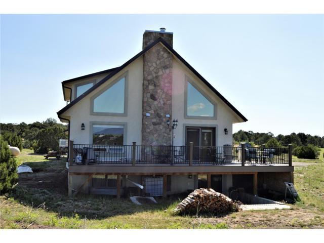 205 Hoofprint Court, Walsenburg, CO 81089 (MLS #9375509) :: 8z Real Estate
